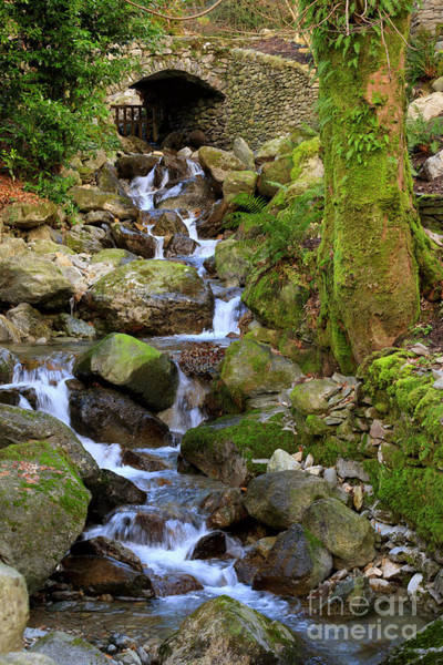 Wall Art - Photograph - Greenhead Gill Above Grasmere In Lake District National Park by Louise Heusinkveld