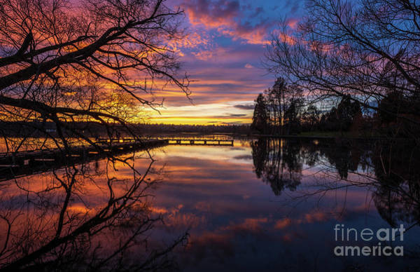 Wall Art - Photograph - Greenlake Sunset Reflection Through The Trees by Mike Reid