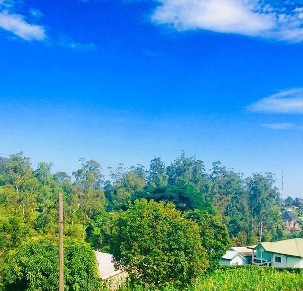Wall Art - Photograph - Greetings From Bamenda  by Nyunga Teghah