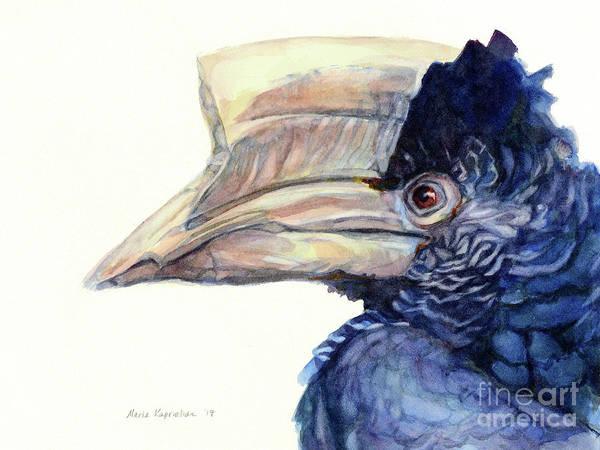 Hornbill Painting - Grey-cheeked Hornbill by Maria Kaprielian