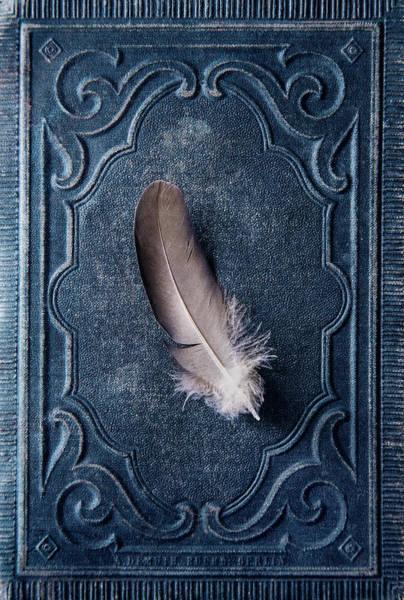 Photograph - An Angel Landed by Jaroslaw Blaminsky