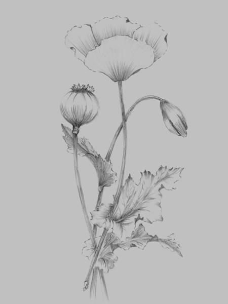 Love Mixed Media - Grey Flower Sketch 3 by Naxart Studio