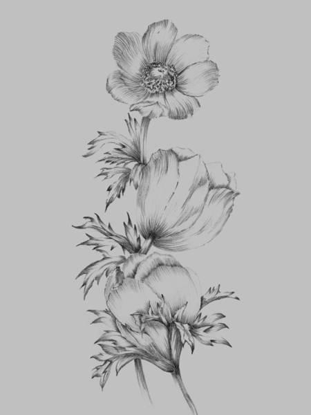 Love Mixed Media - Grey Flower Sketch II by Naxart Studio