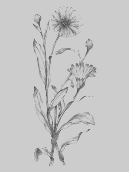 Love Mixed Media - Grey Flower Sketch Illustration 3 by Naxart Studio