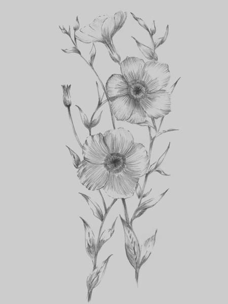 Love Mixed Media - Grey Flower Sketch Illustration I by Naxart Studio