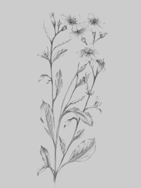 Love Mixed Media - Grey Flower Sketch Illustration by Naxart Studio