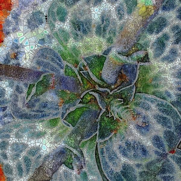 Wall Art - Digital Art - Grey Succulent Abstract  by Mo Barton