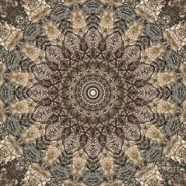 Digital Art - Grey Tan Detailed Mandala Design by Sheila Wenzel