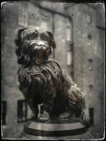 Wall Art - Photograph - Greyfriar's Bobby by Dave Bowman