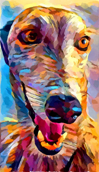 Wall Art - Painting - Greyhound by Chris Butler