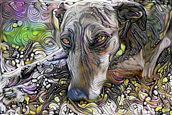Mixed Media - Greyhound Rescue Dog by Peggy Collins