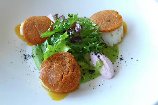 Photograph - Grilled Scallop Appetizer At A Luxury Restaurant  by Steve Estvanik
