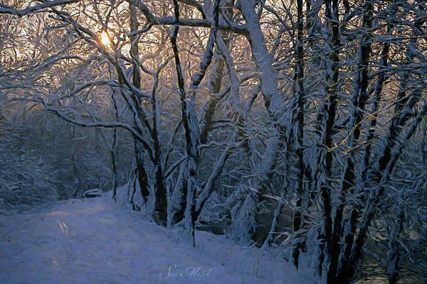 Tulpehocken Creek Photograph - Grings Mill Snow 90-111 by Scott McAllister