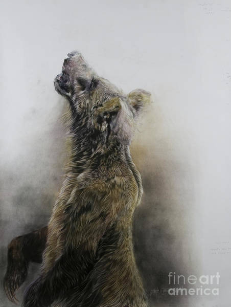 Wall Art - Painting - Grizzly Bear 3 by Odile Kidd