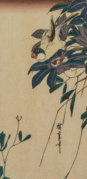 Relief - Grosbeak And Clematis by Utagawa Hiroshige