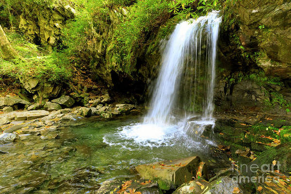 Wall Art - Photograph - Grotto Falls On Trillium Gap Trail In Smoky Mountains National Park by Louise Heusinkveld