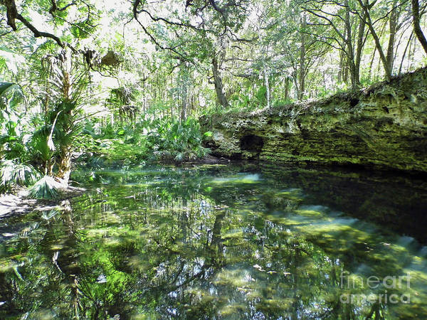 Photograph - Grotto Reflections by D Hackett