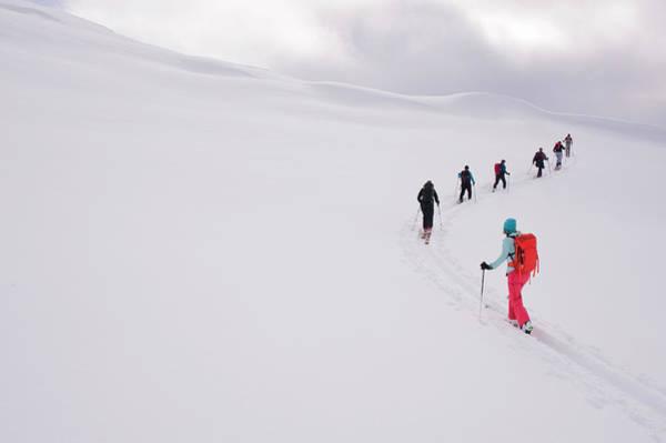 Pemberton Photograph - Group Of Backcountry Skiers Climbing by Darryl Leniuk