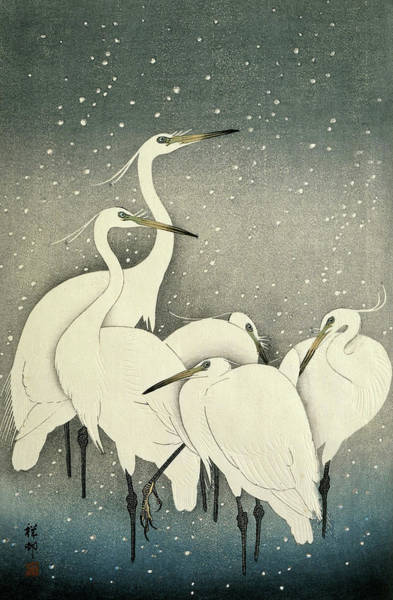 Wall Art - Painting - Group Of Egrets by Ohara Koson