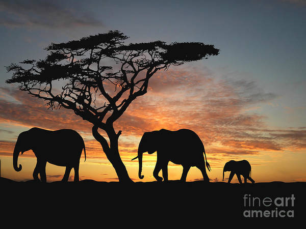 Mammal Digital Art - Group Of Elephant In Africa by Tebnad