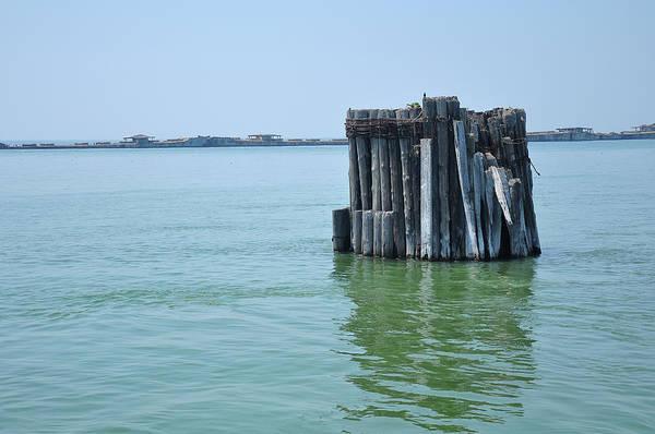 Photograph - Grouped Pillars by Dan Urban