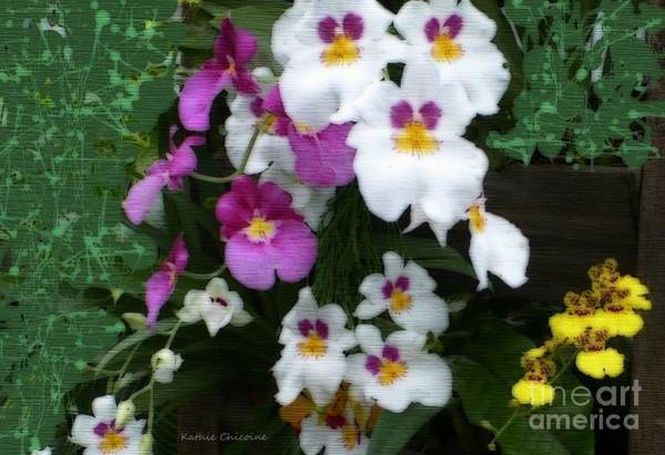 Digital Art - Groups Of Orchids by Kathie Chicoine