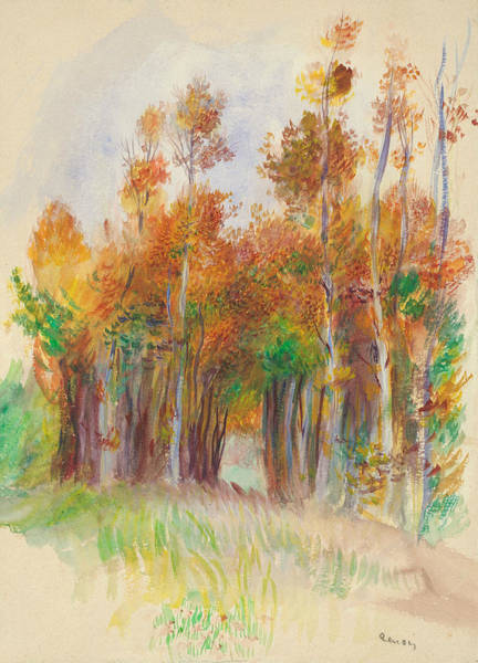 Drawing - Grove Of Trees by Auguste Renoir