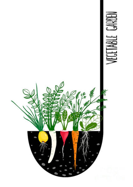 Organic Garden Wall Art - Digital Art - Grow Vegetable Garden And Cook Soup by Popmarleo