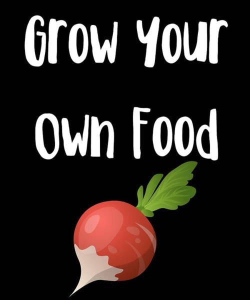 Thanksgiving Dinner Digital Art - Grow Your Own Food 2 by Kaylin Watchorn