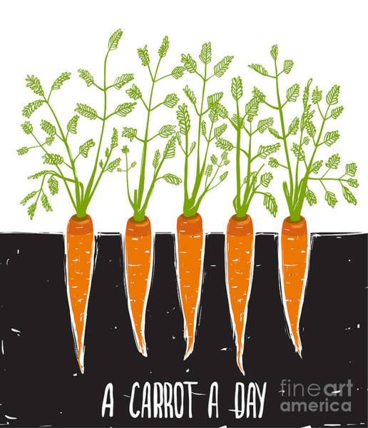 Bed Wall Art - Digital Art - Growing Carrots Scratchy Drawing And by Popmarleo
