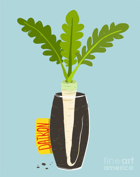 Wall Art - Digital Art - Growing Daikon Radish With Green Leafy by Popmarleo