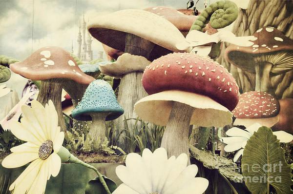 Toadstools Wall Art - Photograph - Grunge Textured Garden by Burhan Bunardi