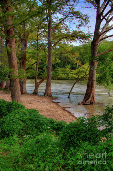 New Braunfels Photograph - Guadalupe  by Kelly Wade