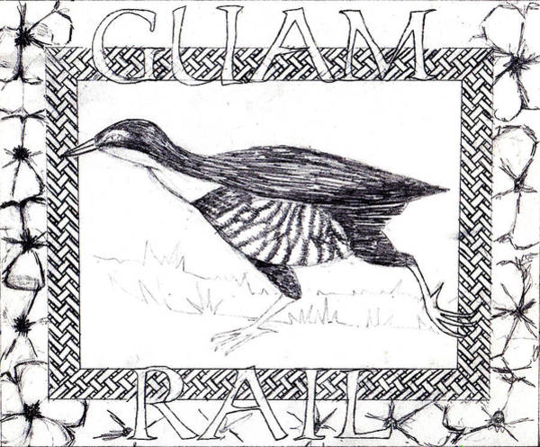 Roadrunner Painting - Guam Rail by Genevieve Esson