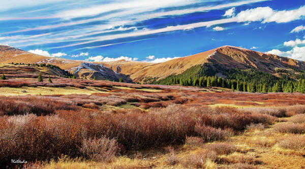 Photograph - Guanella Pass Colors by Tim Kathka