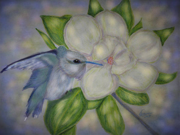 Drawing - Guardian Of The Magnolia by Angela Davies