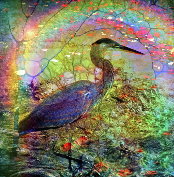 Digital Art - Guardian Of The Rainbow by Tara Turner
