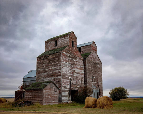 Photograph - Guardians Of The Plains 2 by Harriet Feagin