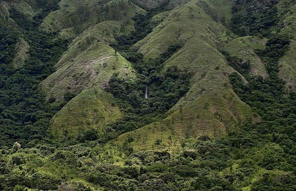 Photograph - Guatopo National Park by Anthony Dezenzio
