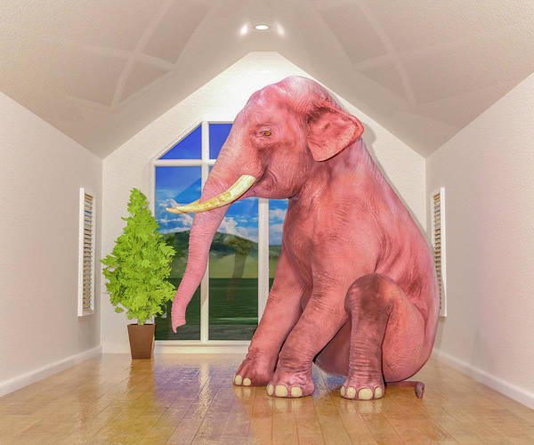 Fun House Digital Art - Guess What's In The Room by Betsy Knapp