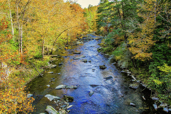 Photograph - Guest River Autumn by Dale R Carlson