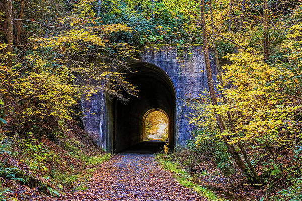 Photograph - Guest River Gorge Tunnel by Dale R Carlson