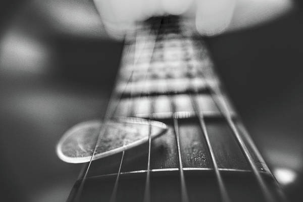 Photograph - Guitar Strings Black And White by Chance Kafka