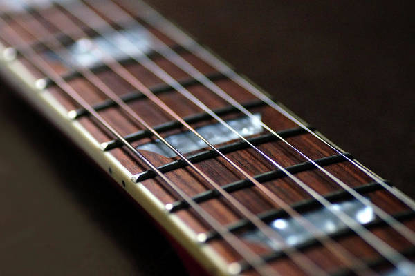 Photograph - Guitar Strings by Mike Murdock