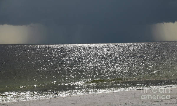Wall Art - Photograph - Gulf Storm-0056 by Gary Gingrich Galleries