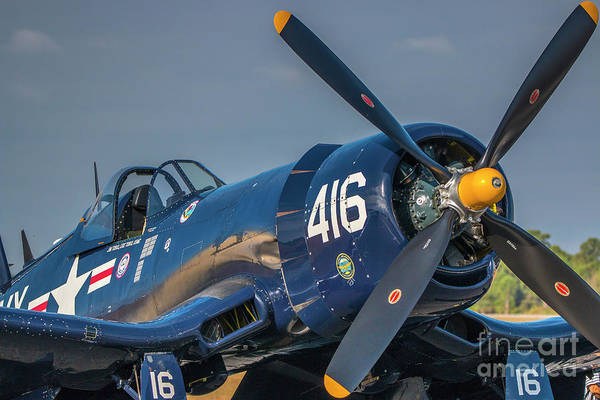 Photograph - Gull Wing Corsair by Tom Claud