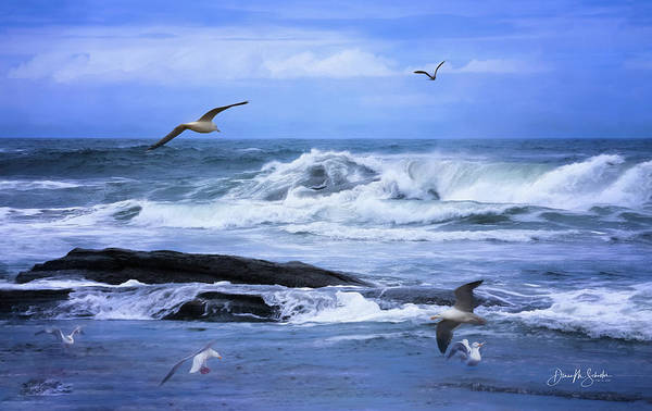 Oregon Coast Digital Art - Gulls Just Wanna Have Fun by Diane Schuster