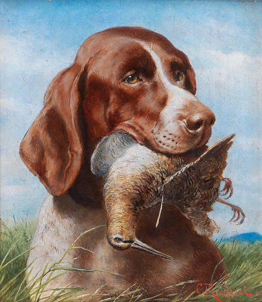 Painting - Gundog With Snipe by Carl Reichert