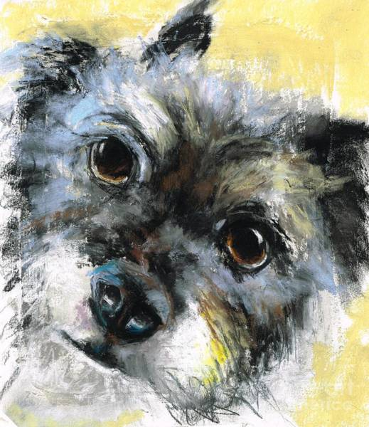 Mutt Painting - Gunny by Frances Marino