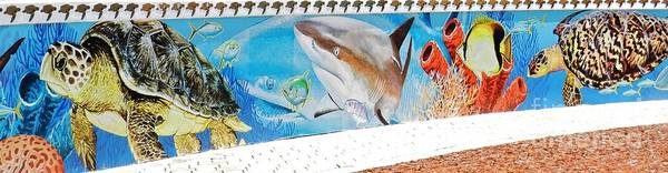 Wall Art - Photograph - Guy Harvey Mural 2 by Snapshot Studio
